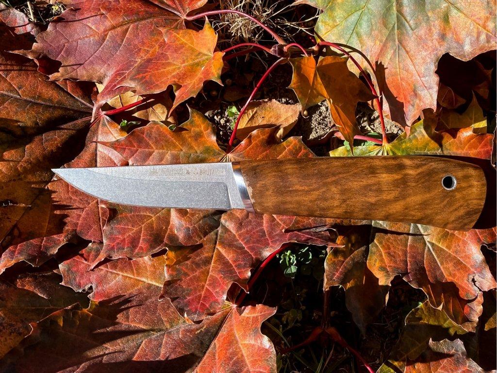 Nôž Kizlyar Supreme Samoyed N690 Zebrawood