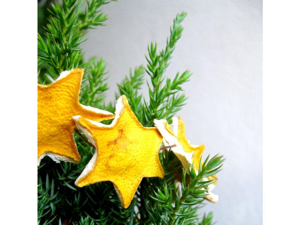 Vánoční řetěz - citronová hvězdička - velká