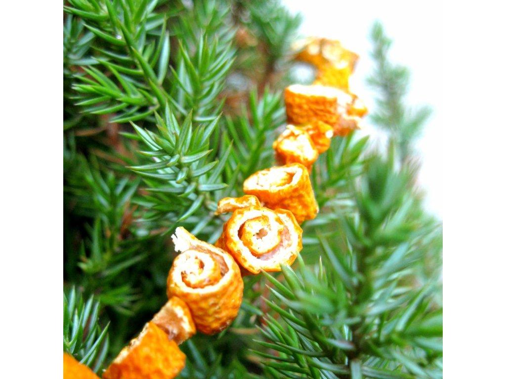 Vánoční řetěz - pomerančový šnek
