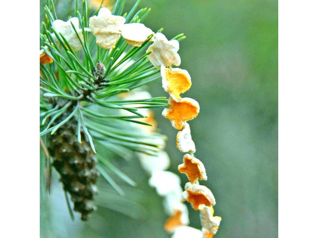 Vánoční řetěz - citronový zvoneček