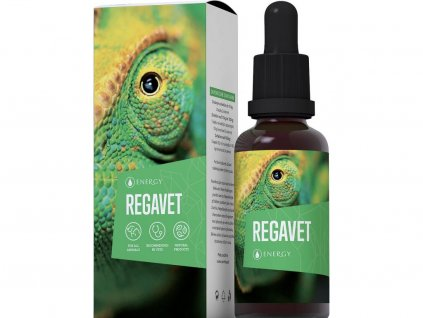 REGAVET ENERGY