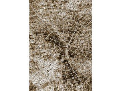 Moderní kusový koberec 70913/24326 TANGO Pařez stromu hnědý