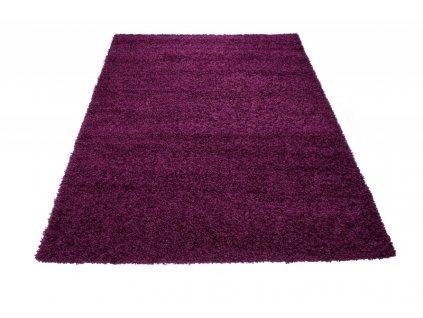 Kusový shaggy koberec RIO 6365A Jednobarevný fialový