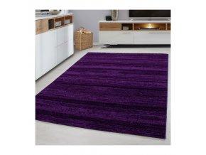 Moderní kusový koberec Plus 8000 Lila | fialový