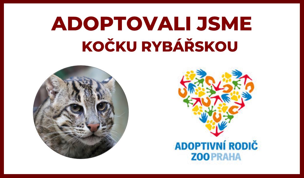 Jsme adoptivní rodiče Kočky rybářské v ZOO Praha