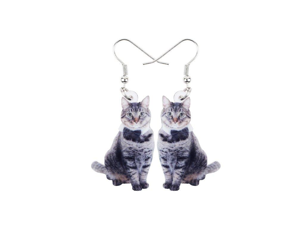 Náušnice mourovatá kočka II