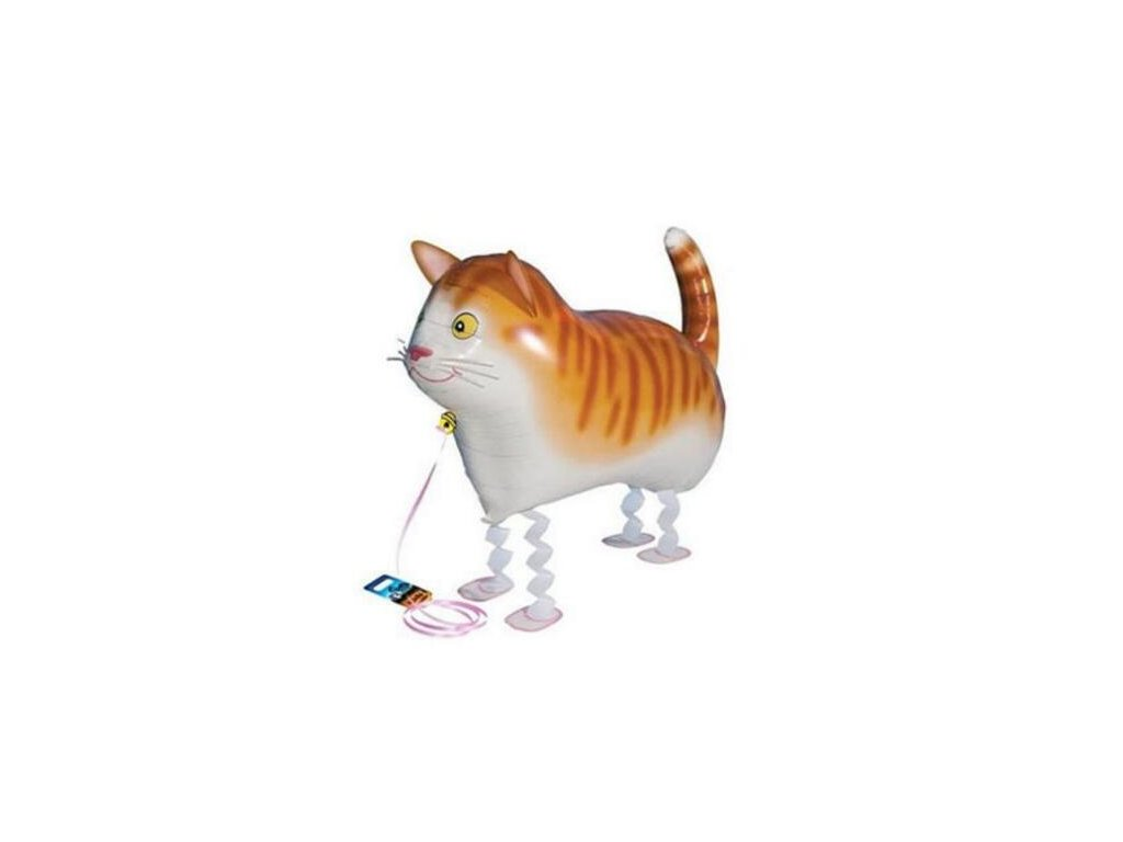 Chodící balónek zrzavá kočka