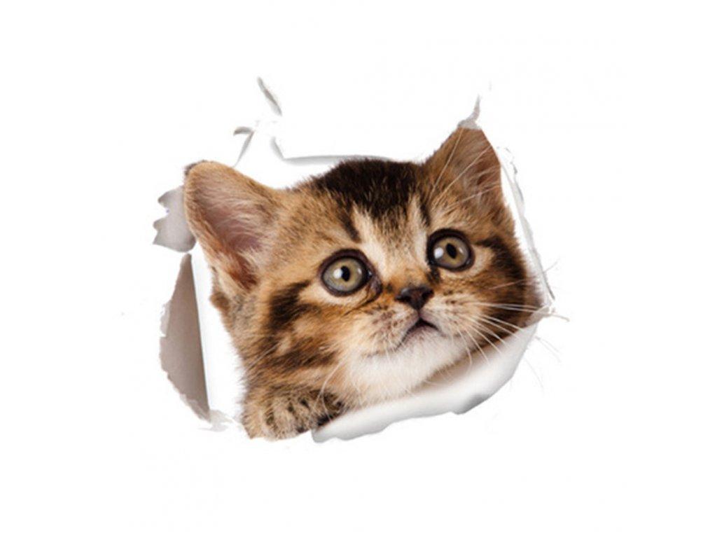 Velká samolepka kočka VII