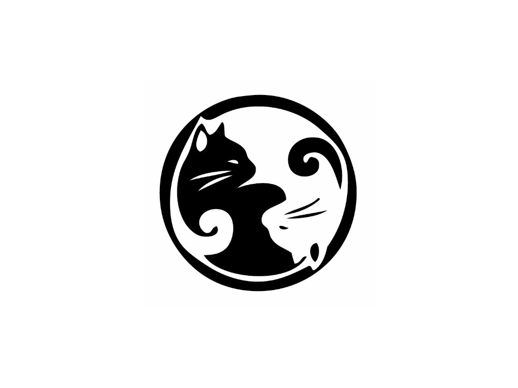 Samolepka na auto jin jang kočka