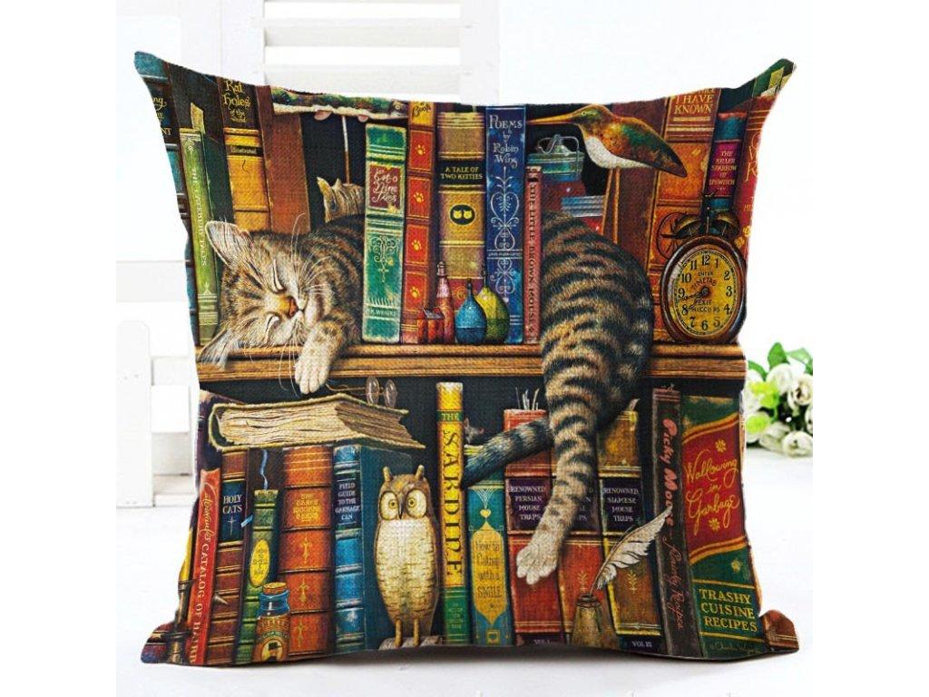 polštář kočka knihovna
