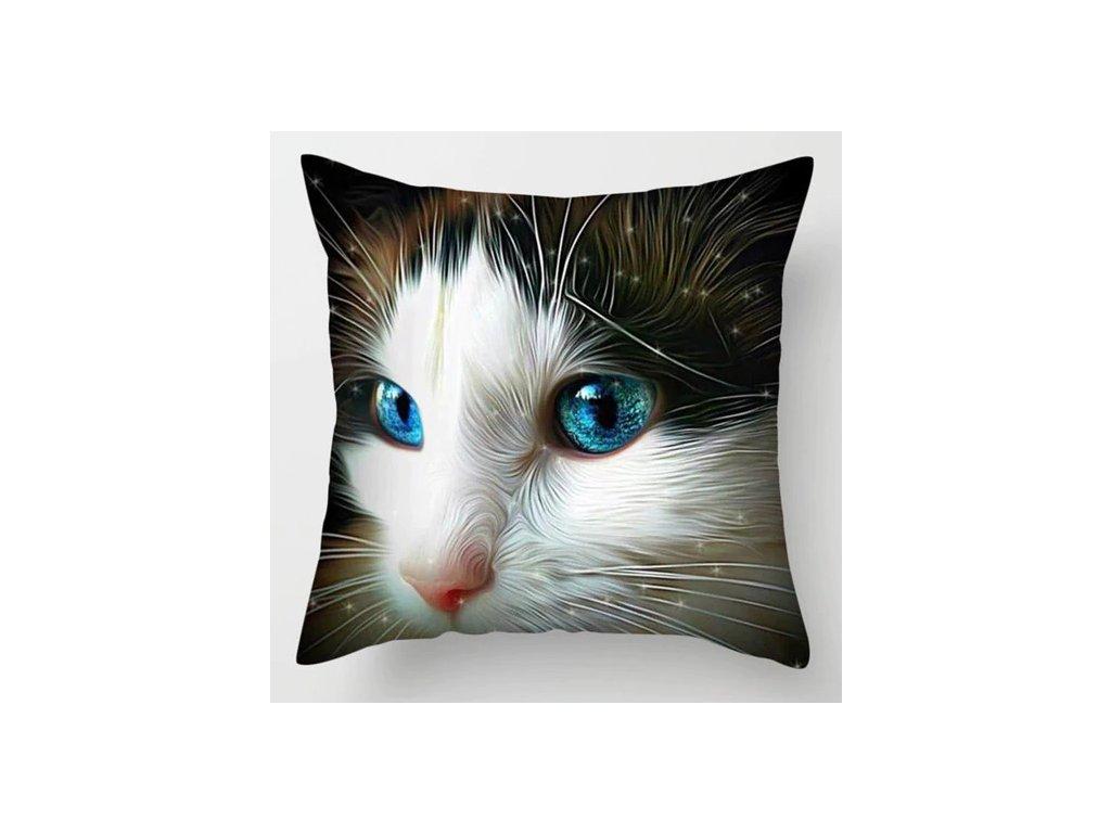 polštář kočka modrooká s kočkou