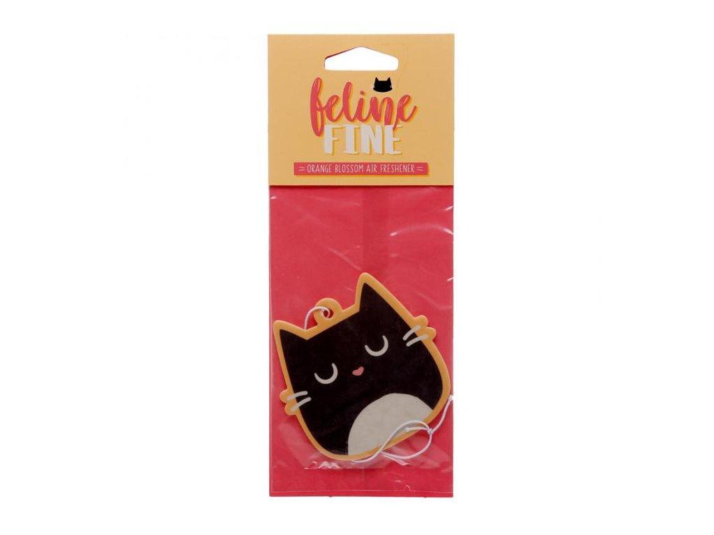 Chlupatá šťavnatá černá kočička