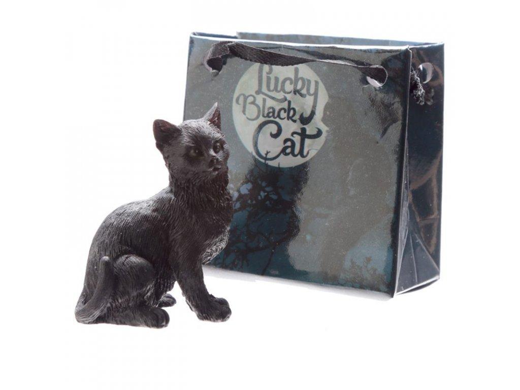 Hodnotit černá kočička