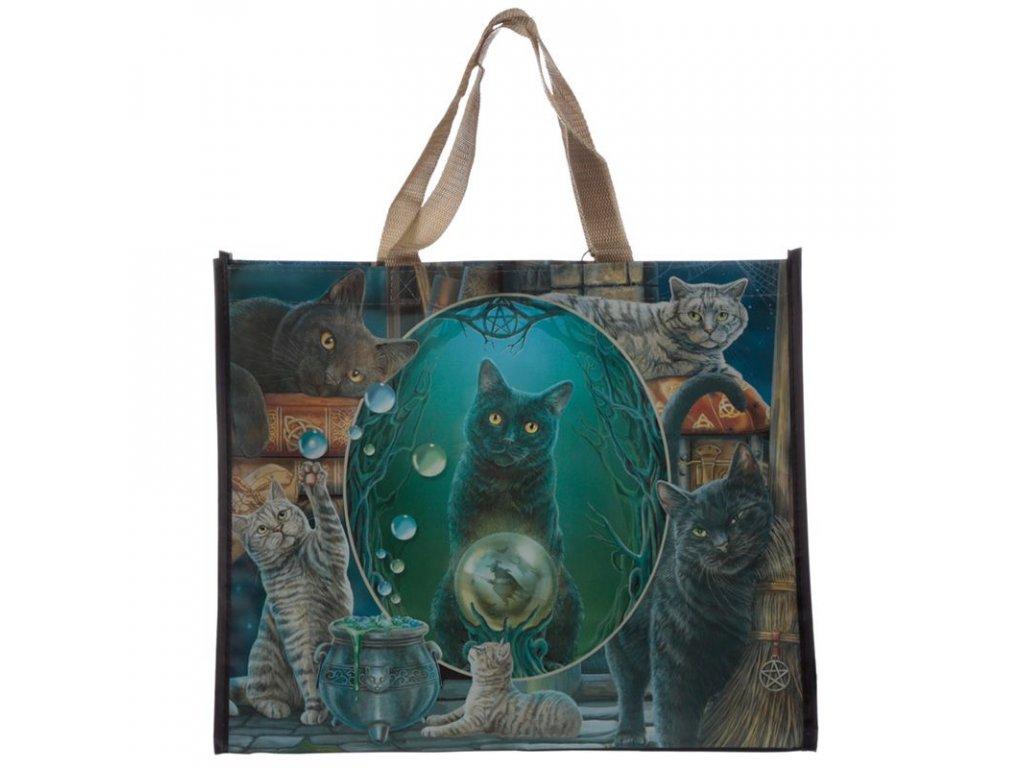takša nákupní kočka magický magie kotě kočička
