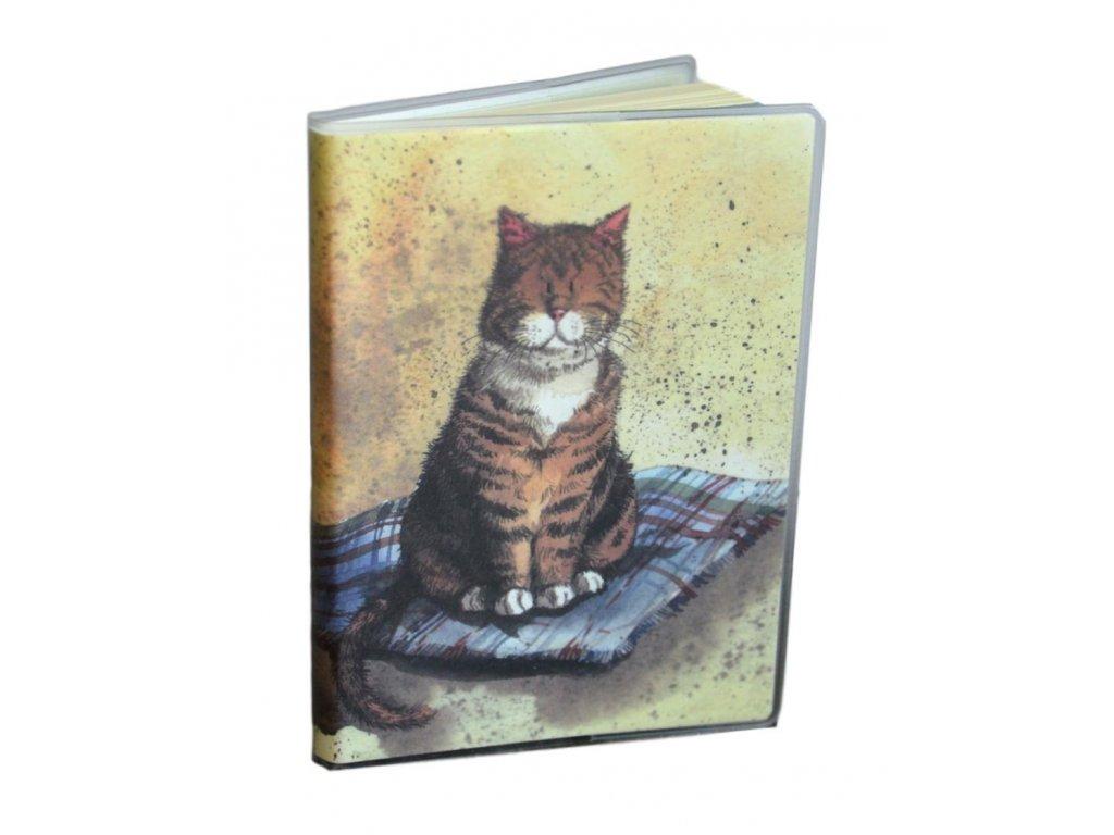 notýsek zápisník blok kočka s kočkou kočičí Alex Clark 2
