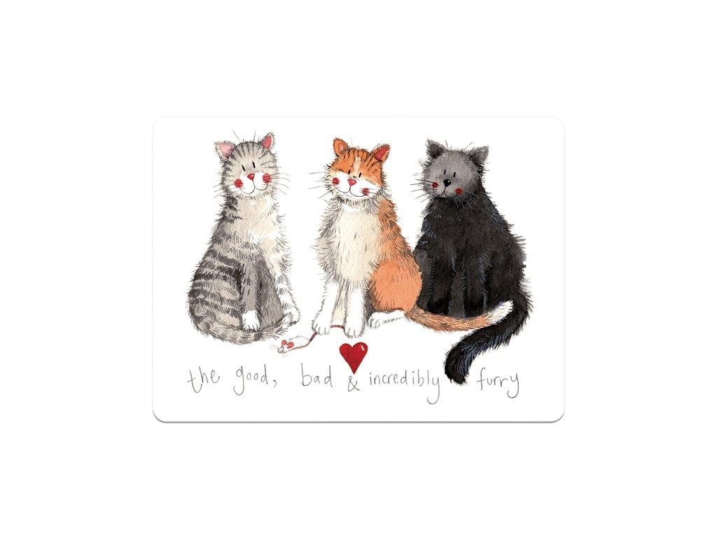 prostírání s kočkou s mačkou kočičí mačacie korek alex clark 2