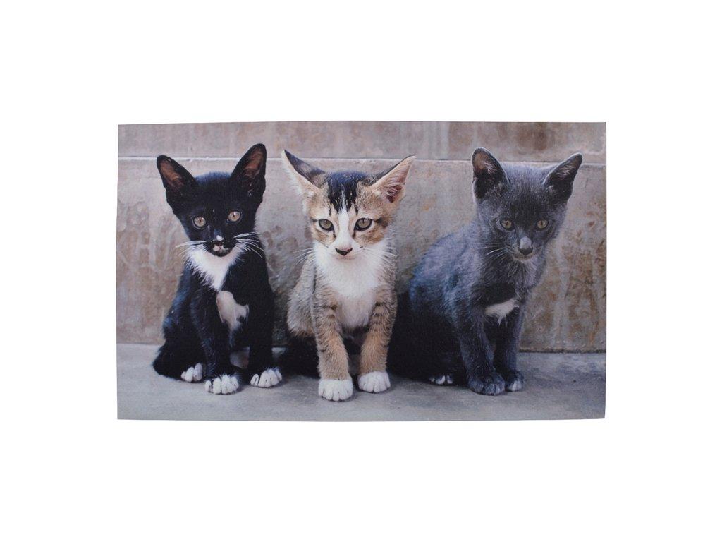 podložka rozožka kočka s kočkou kočičí mačka s mačkou mačacie kotě mačiatko