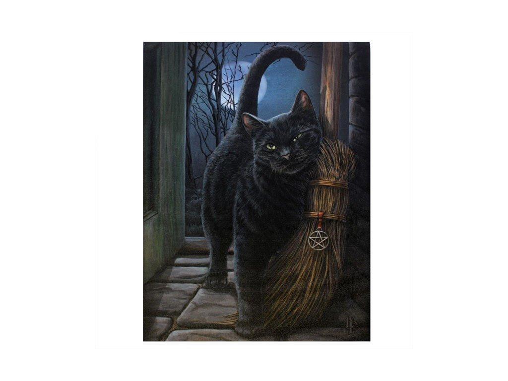 obraz kočka s kočkou kočičí s koštětem lisa parker