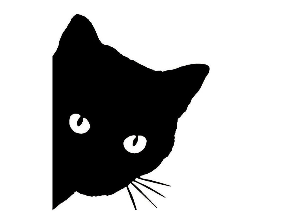 Černá a šťavnatá kočička