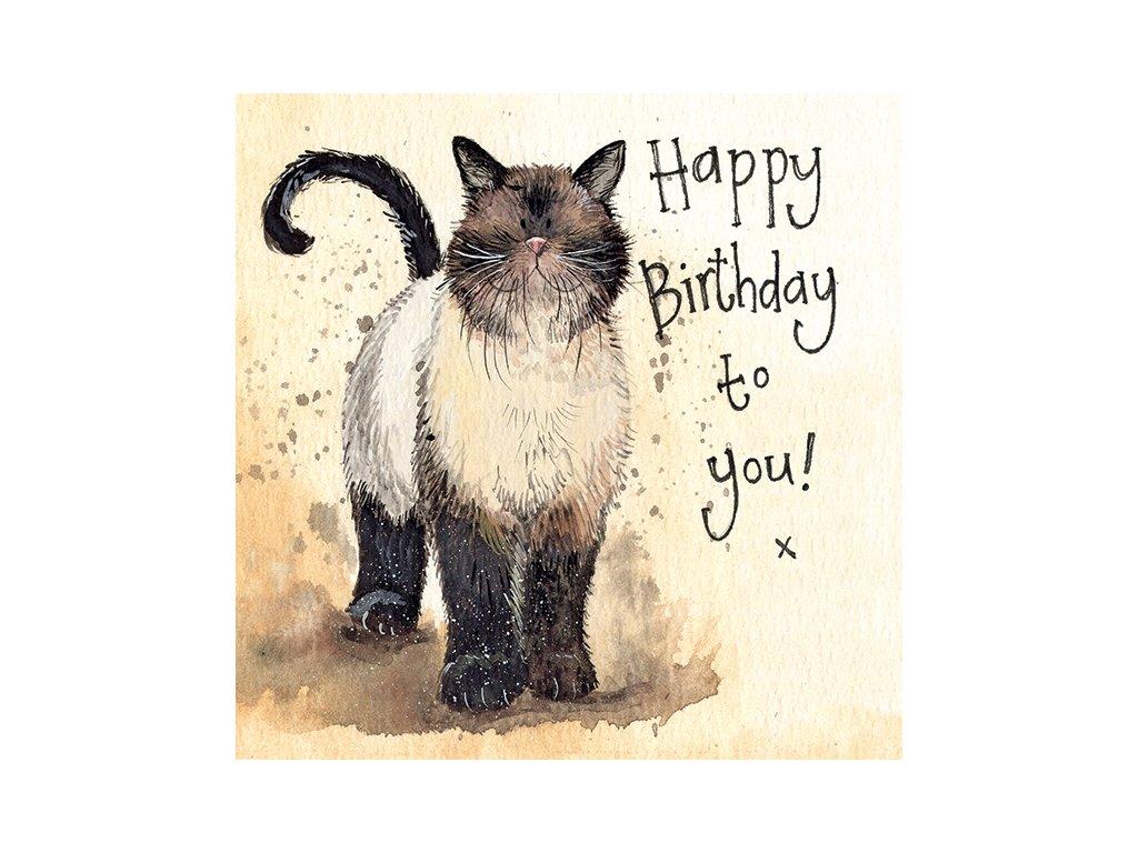 narozeninové přání blahopřání kočka s kočkou kocour alex clark