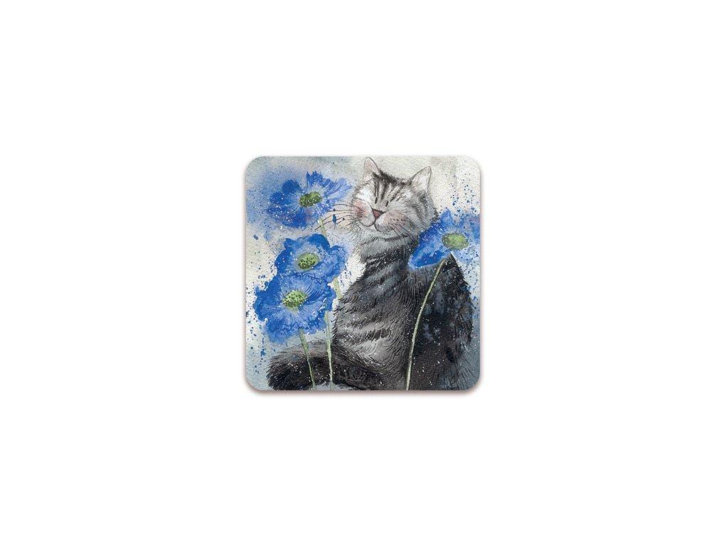 korková podložka pod hrnek kočka s kočkou kočičí chrpy Alex Clark