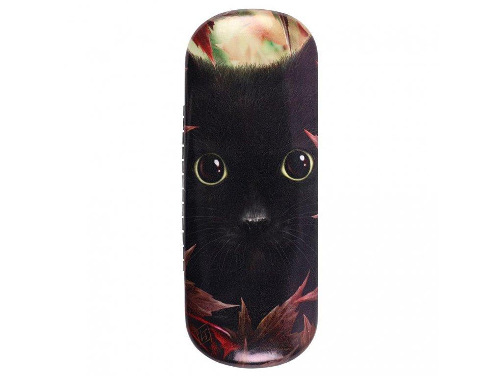 pouzdro na brýle kočka s kočkou kočičí 2
