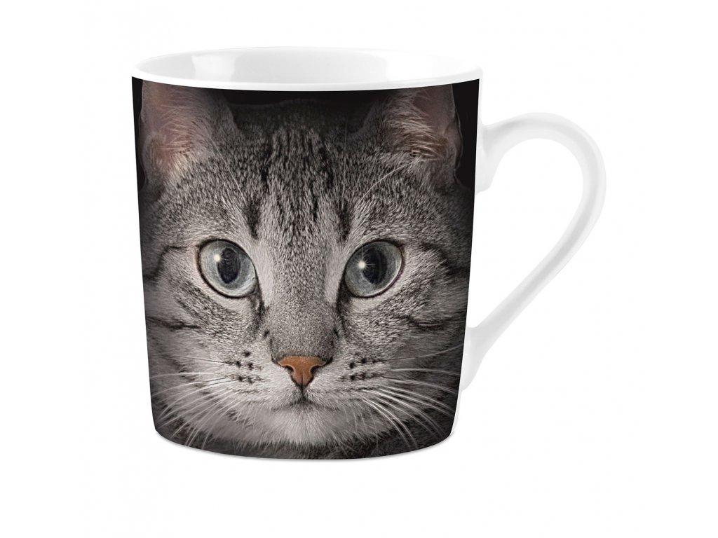 hrnek porcelán kočka s kočkou kočičí mourovatý kocour
