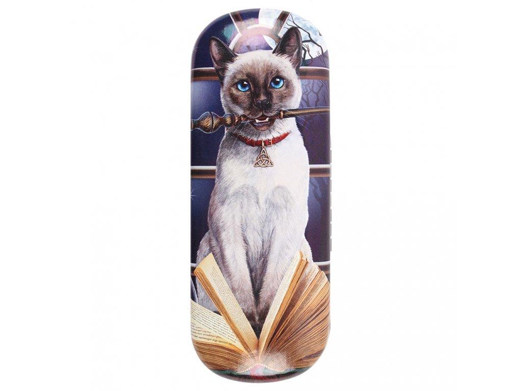 pouzdro na brýle kočka s kočkou kočičí lisa parker kouzelnice 1