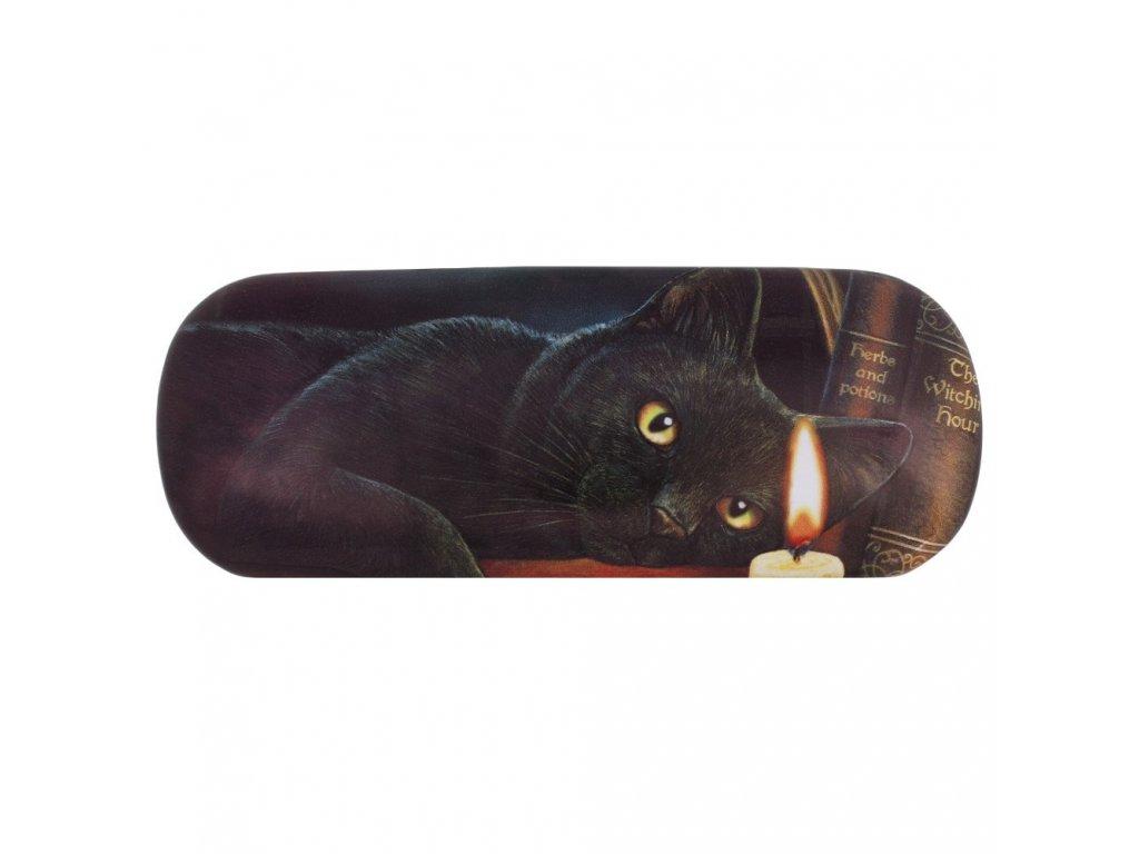 pouzdro na brýle kočka s kočkou kočičí lisa parker knihy 1