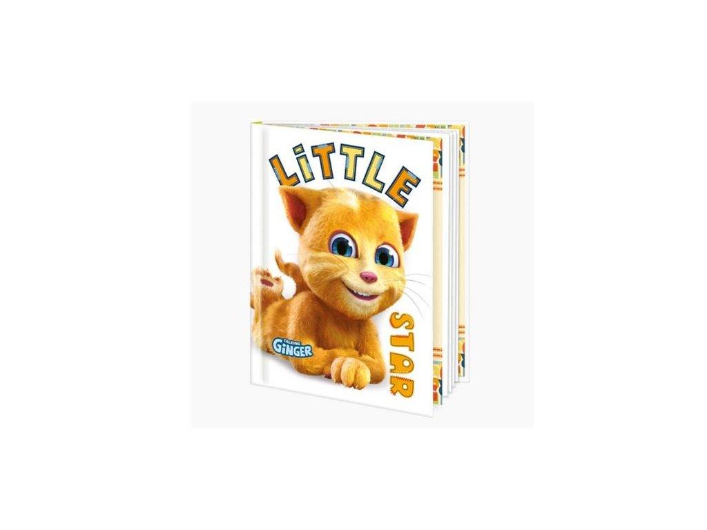památník kočka s kočkou kočičí blok notes