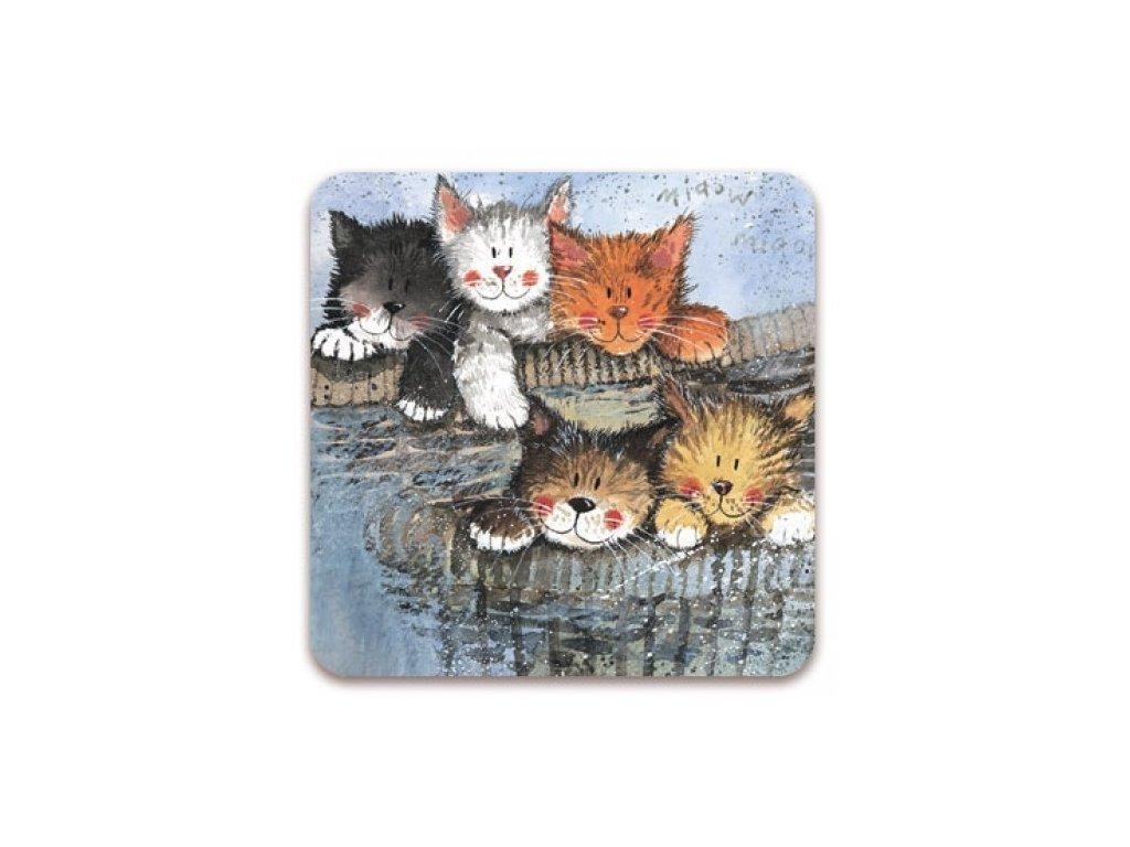 pět koček podtácek kočka s kočkou kočičí alex clark