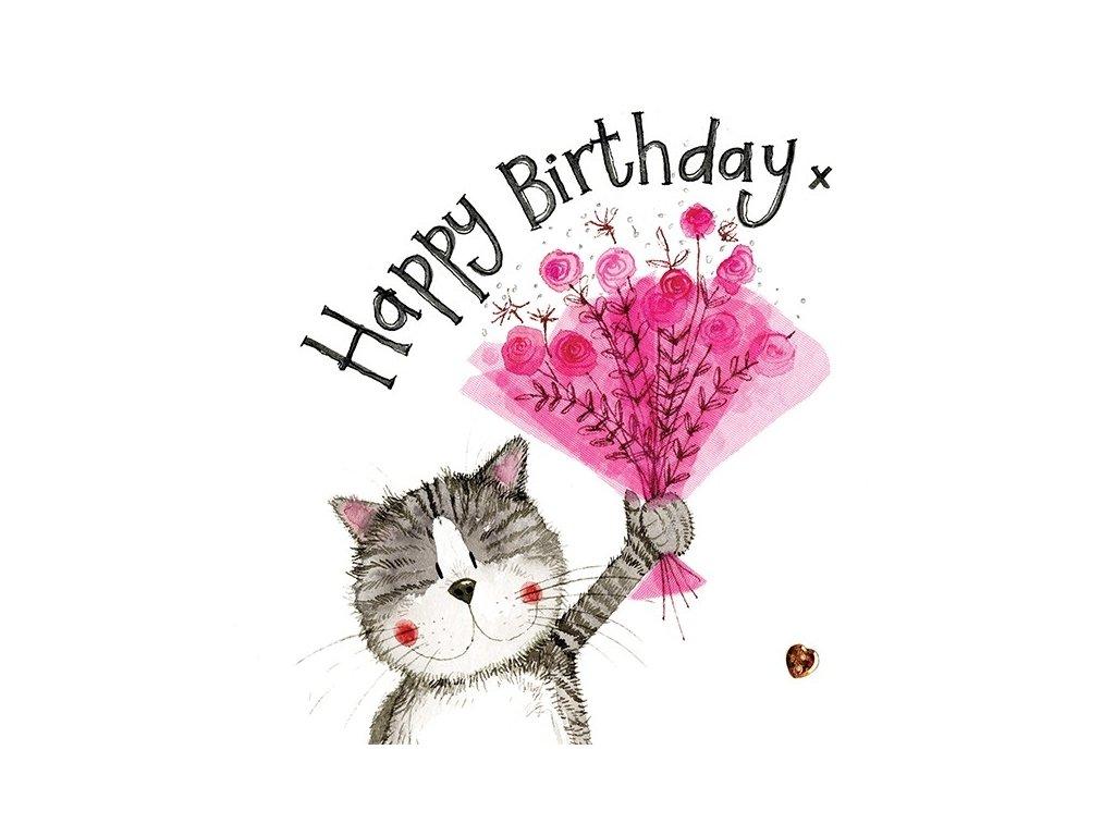 narozeninové přání kočka s kočkou kočičí alex clark