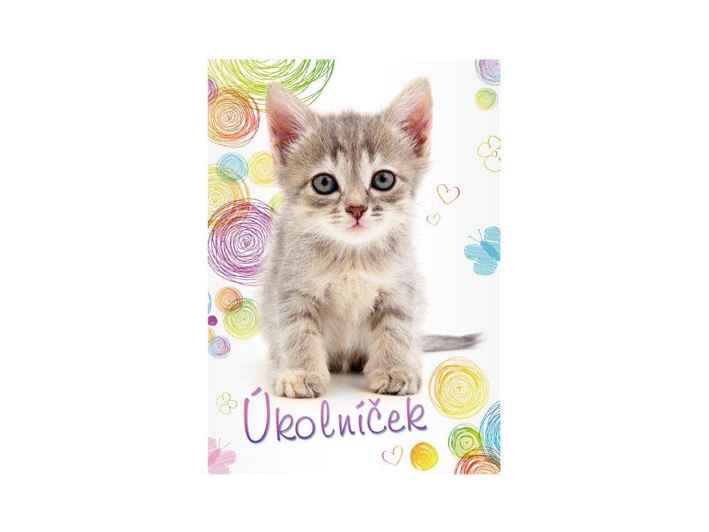 úkolníček kočka s kočkou kočičí kotě