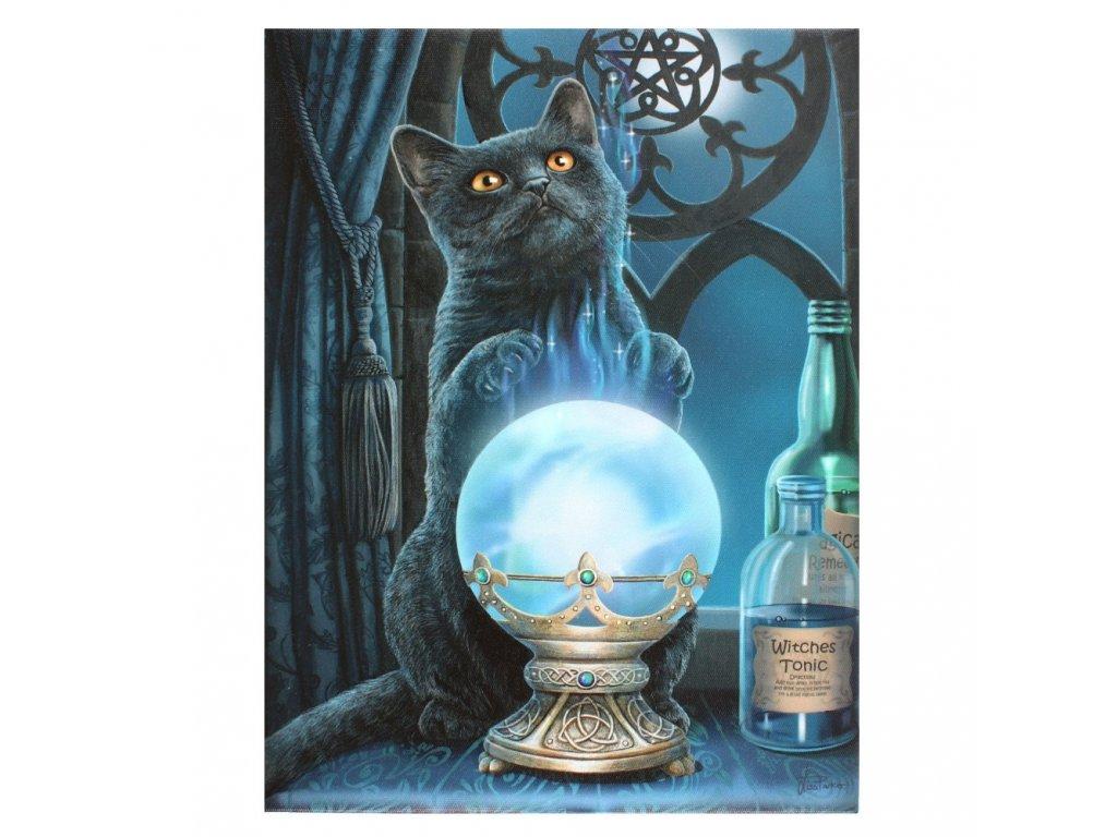obraz kočka s kočkou kočičí věštkyně Lisa Parker