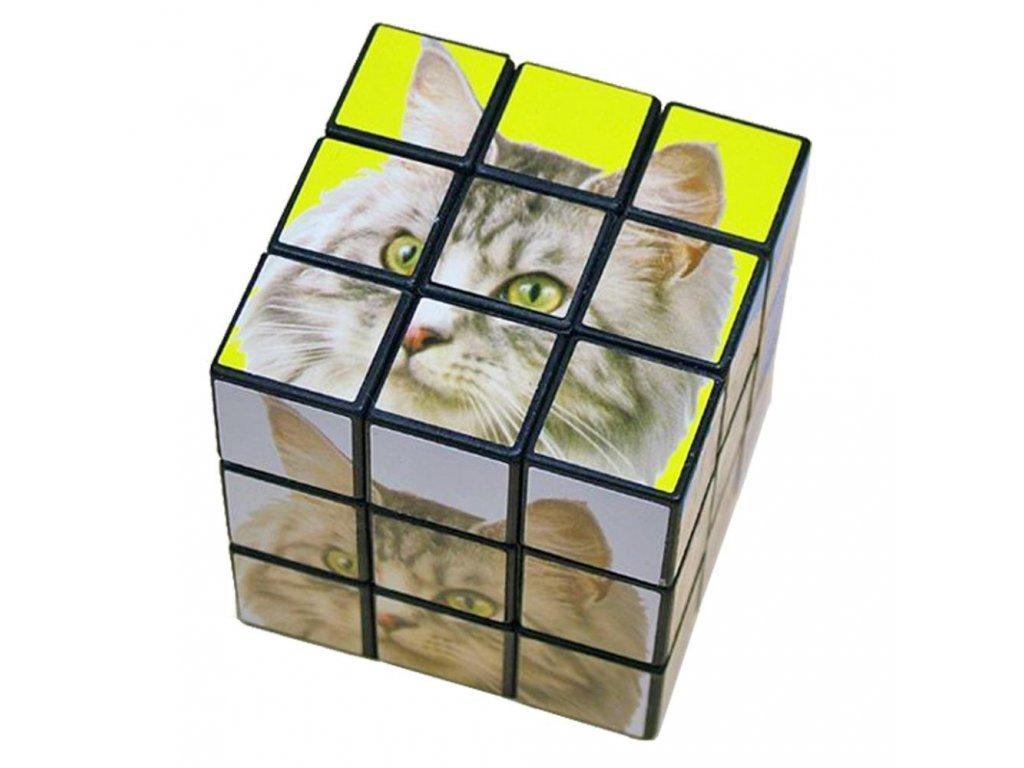 rubikova kostka kočka s kočkou kočičí