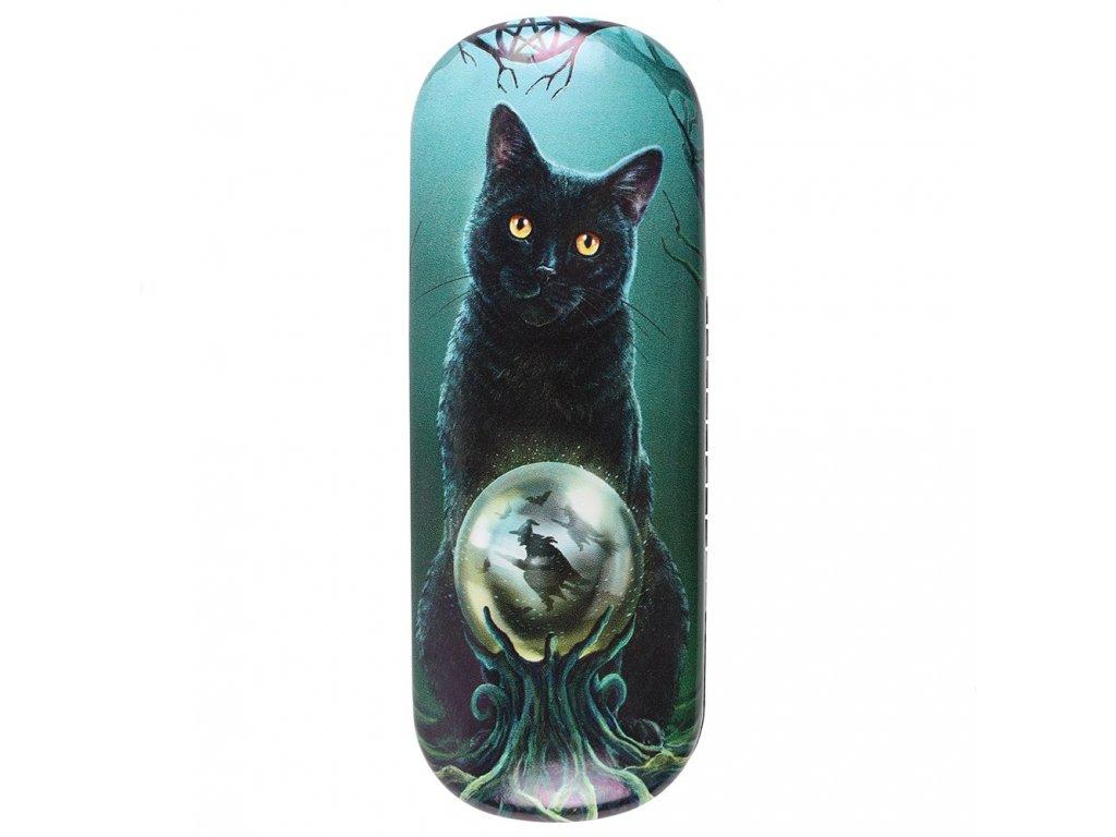 pouzdro na brýle kočka s kočkou kočičí magie lisa parker