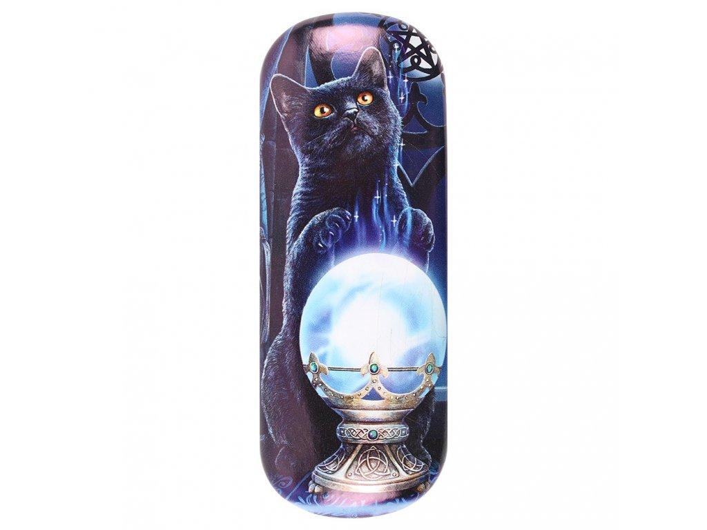 pouzdro na brýle kočka s kočkou kočičí magie věštkyně lisa parker 2
