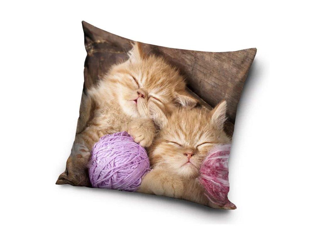 polštář kočka s kotkou kočičí kotě