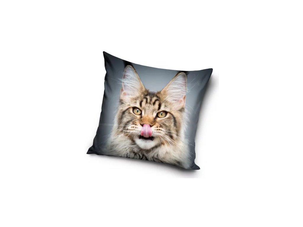 polštář s mlsnou kočkou
