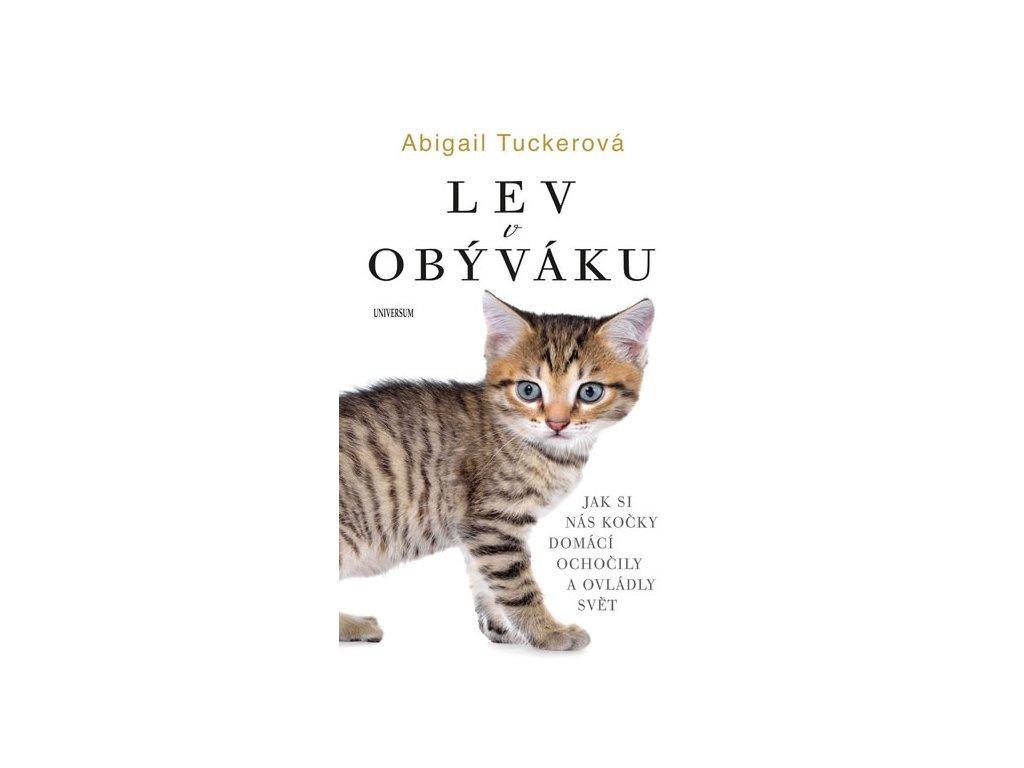 lev v obýváku kočka s kočkou kočičí kniha
