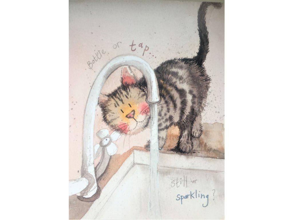přání blahopřání kočka s kočkou kočičí alex clark design
