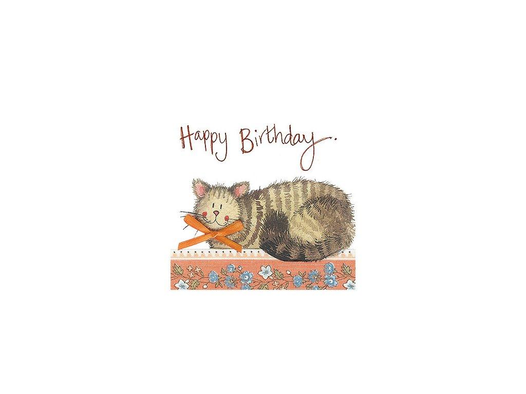 přání blahopřání kočka s kočkou kočičí s mašlí alex clark design