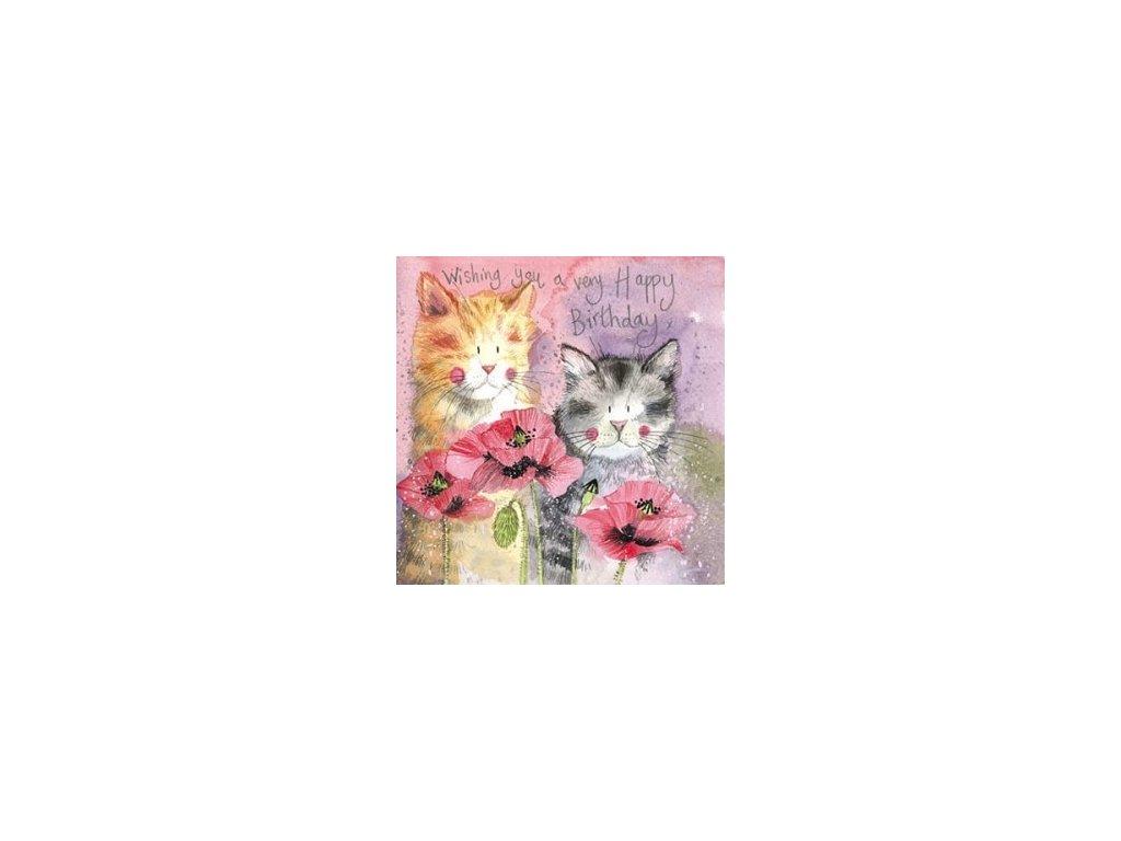 přání blahopřání kočka s kočkou kočičí alex clark