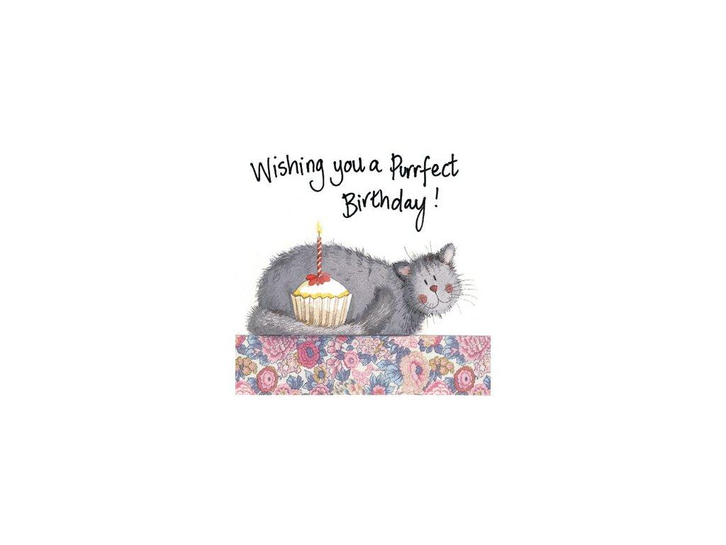 přání blahopřání kočka s kočkou kočičí narozeniny alex clark