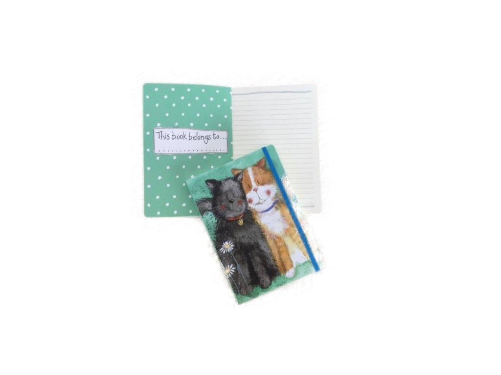 zápisník diář kočka s kočkou kočičí alex clark