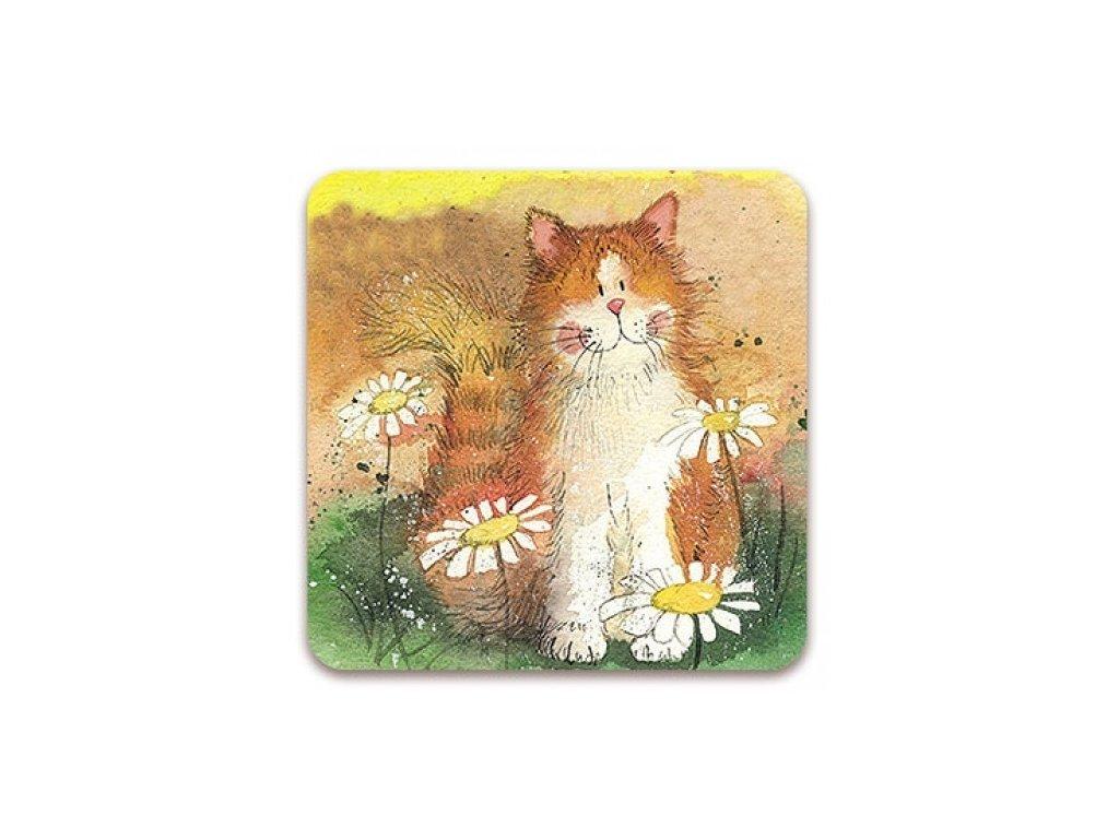 podložka podtácek kočka s kočkou kočičí kopretiny Alex Clark