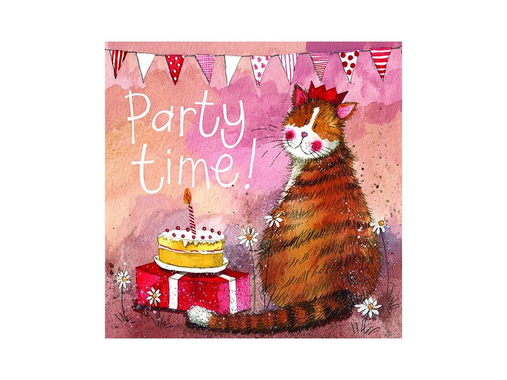 přání blahopřání kočka s kočkou kočičí alex clark dárek narozeniny narozeninové