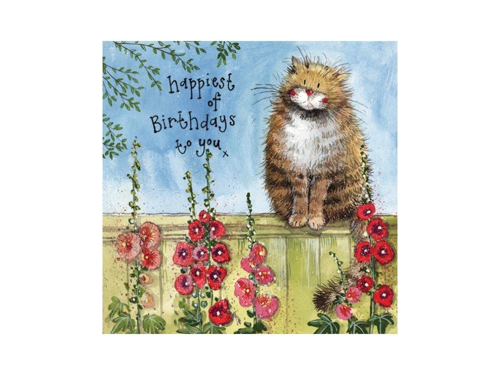 narozeninové přání blahopřání kočka s kočkou kočičí kocour vlčí máky alex clark dárek narozeniny