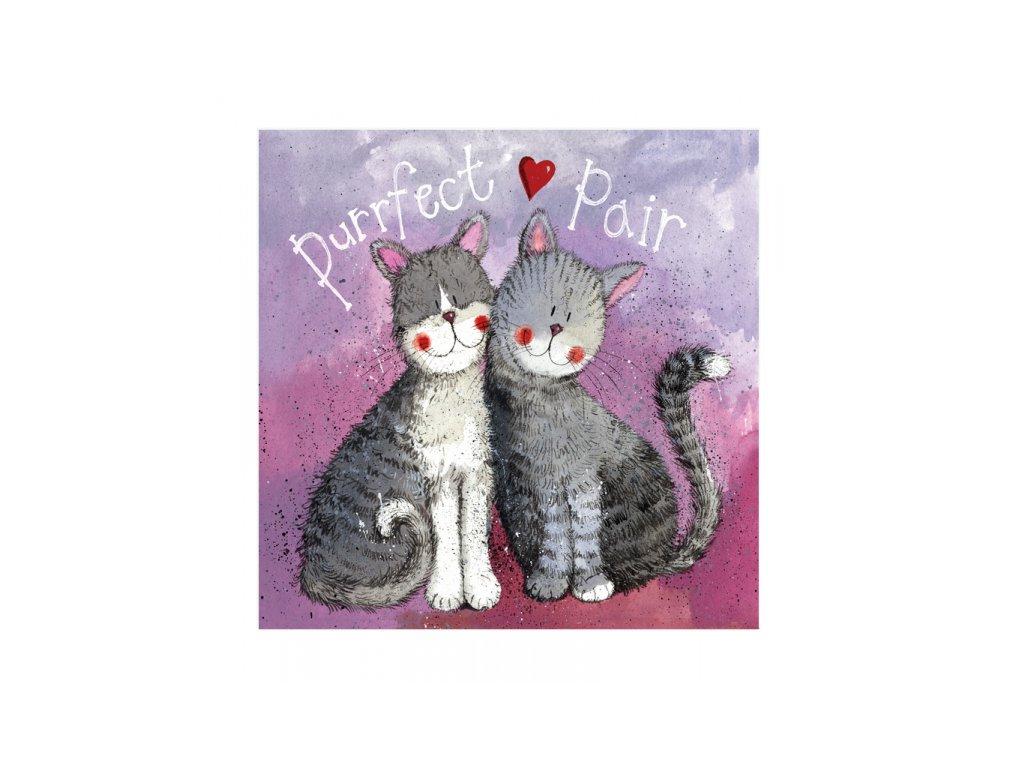 valentýnské přání blahopřání k svatbě kočka s kočkou kočičí srdíčka