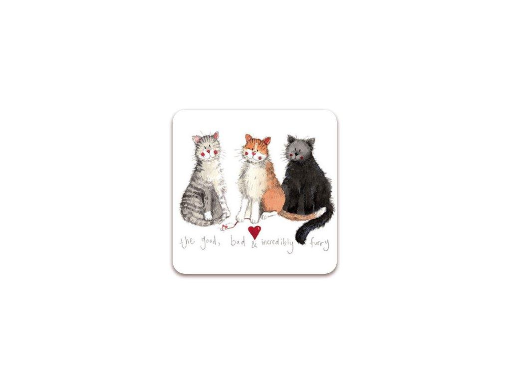 magnetka kočka s kočkou kočičí tři kočky alex clark